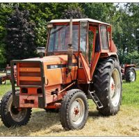 Oldtimer tractoren in Steenbergen