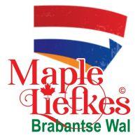 Mapleliefkes