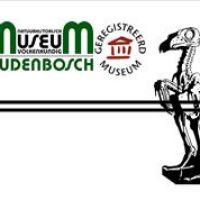 Marcel Deelen stopt als voorzitter van Museum Oudenbosch
